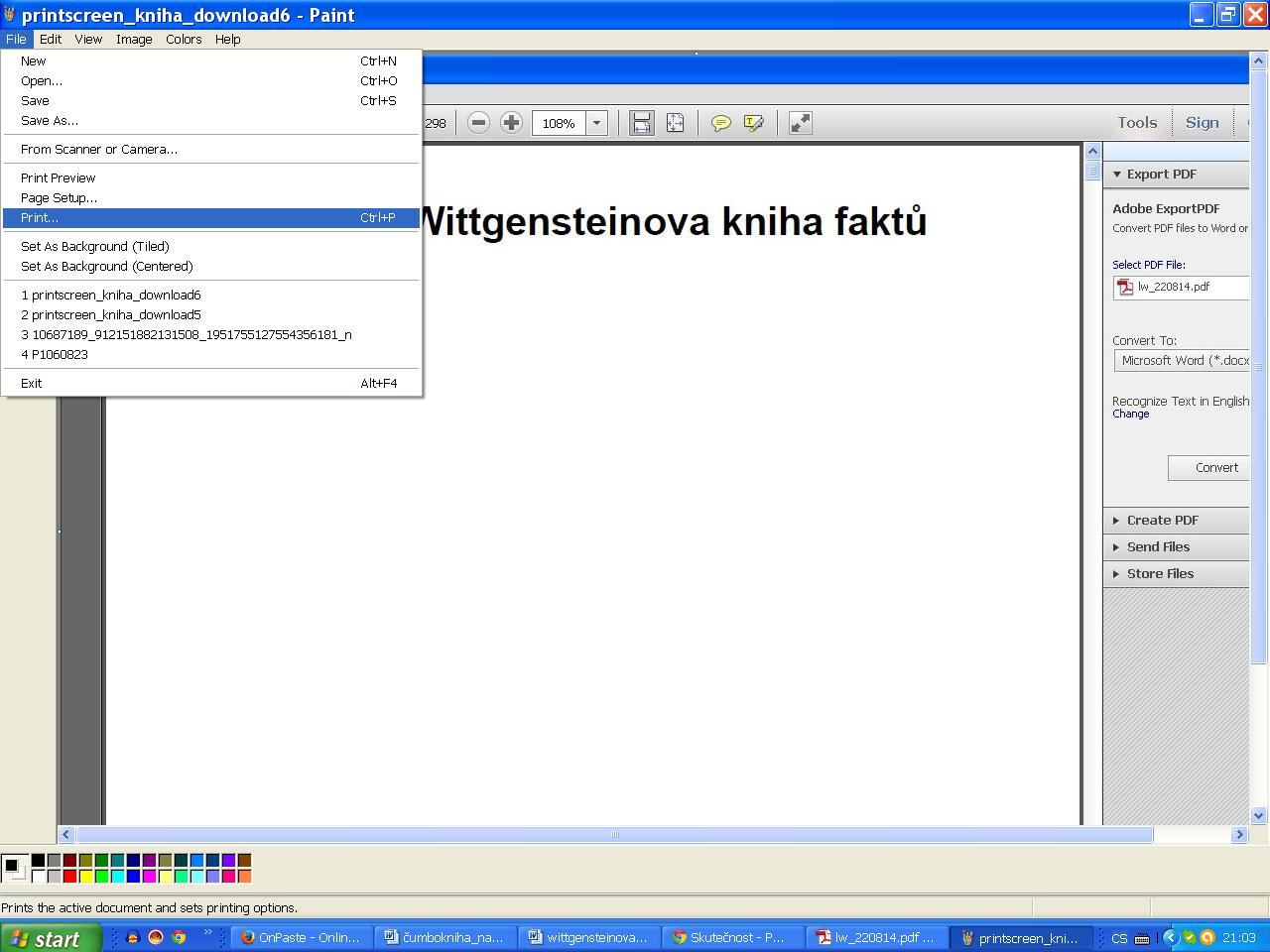 13 printscreen_kniha_download7